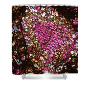 Tlm Of Chondrite Shower Curtain