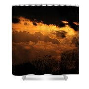 Tn Sunset Nov-11 Shower Curtain