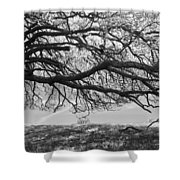 To Lie Here With You Would Be Heaven Shower Curtain