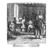 Tobacco Factory, 1873 Shower Curtain