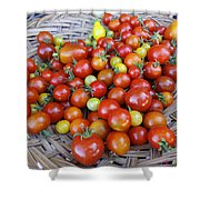 Tomato Time Shower Curtain