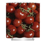 Tomatoes At A Market In Provence Shower Curtain