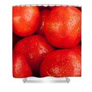 Tomatos Shower Curtain