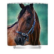 Tommy - Horse Painting Shower Curtain