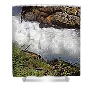 Tongass National Forest Shower Curtain