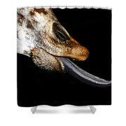 Tongue Work Two Shower Curtain