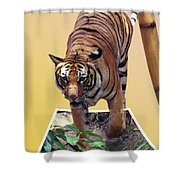 Too Late Dinner Time Shower Curtain