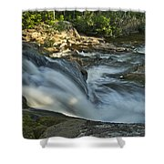 Top Of The Dog 4191 Shower Curtain