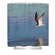 Topo Orange Billed Skimmer Shower Curtain