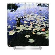 Torch River Water Lilies 3.0 Shower Curtain