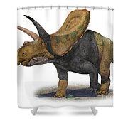 Torosaurus Latus, A Prehistoric Era Shower Curtain