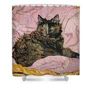 Torti Shower Curtain