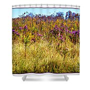 Touch Of Purple In October Shower Curtain