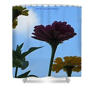 Touch Of Sky Shower Curtain