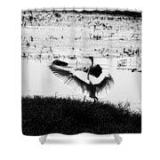 Touchdown-black And White Shower Curtain