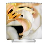 Touching Softly Shower Curtain