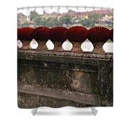 Traditional Hue Shower Curtain