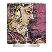 Traditional Painting On A Wall Jodhpur Shower Curtain