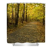 Trail Scene Autumn Abstract 1 Shower Curtain