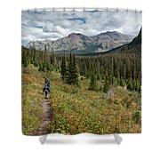 Trail Through Bear Country Shower Curtain