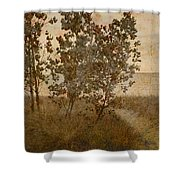Trail To The Summer Beach Shower Curtain