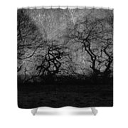 Trails Of Taken Shower Curtain