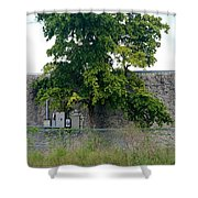 Train Tree Shower Curtain