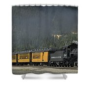 Trainload Of Tourists Shower Curtain