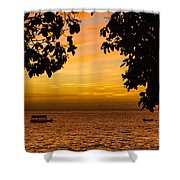 Tranquility Beyond The Trees Shower Curtain