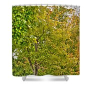 Transition Of Autumn Color Shower Curtain