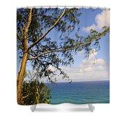 Tree And A Tropical Beach Shower Curtain
