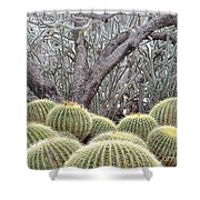Tree And Barrel Cactus Shower Curtain