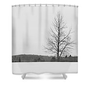 Tree And Snow Shower Curtain