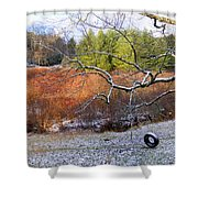 Tree And Tire Swing In Winter Shower Curtain