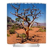 Tree At Cedar Ridge Shower Curtain