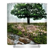 Tree By Stream Shower Curtain