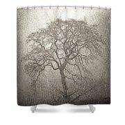 Tree Fog Shower Curtain