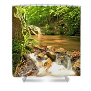 Tree In The Bend Shower Curtain