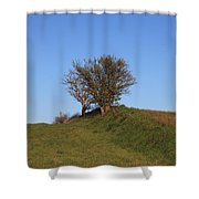 Tree In The Country Shower Curtain