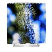 Tree Lichen Shower Curtain