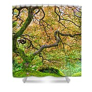 Tree Of Beauty Shower Curtain