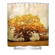 Tree Of Joy Shower Curtain by Jai Johnson