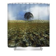 Tree On A Landscape, Giants Ring Shower Curtain