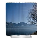 Tree On Lakefront Shower Curtain