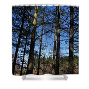 Tree Party Shower Curtain