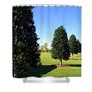 Tree Perspective Shower Curtain