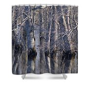 Tree Reflection Abstract Shower Curtain