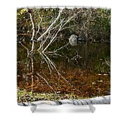 Tree Reflections Stoney Creek Shower Curtain