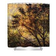 Tree Stamp Shower Curtain