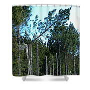 Tree Trimming Shower Curtain